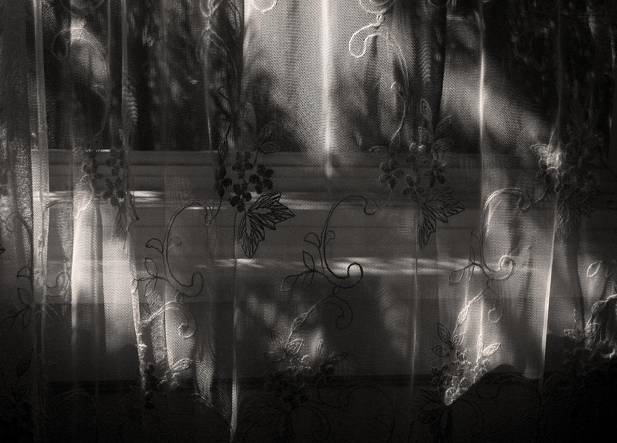 Lace Curtain Photograph - Morning Light And Shadow by Joanne Coyle
