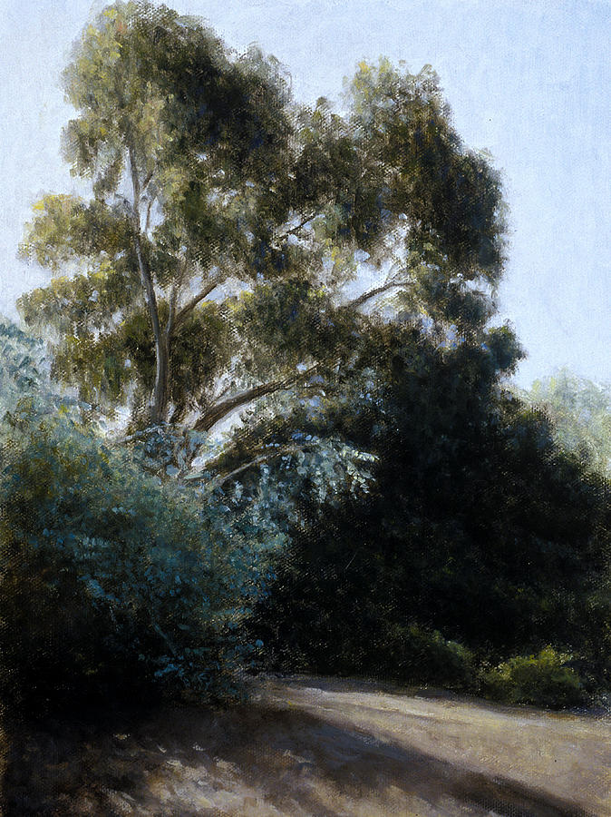 Eucalyptus Painting - Morning Light And Shadows by Laura Wynne