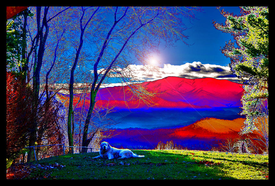 Surrealism Photograph - Morning Light At Donnas House by Susanne Still