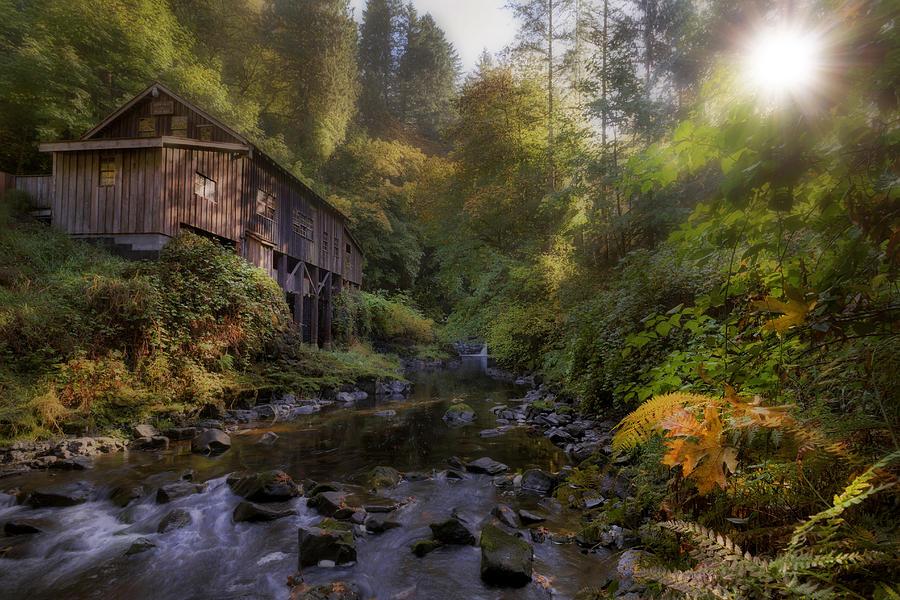 Morning Light Cedar Creek Grist Mill Photograph by David Gn