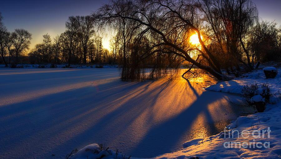 morning light by Franziskus Pfleghart