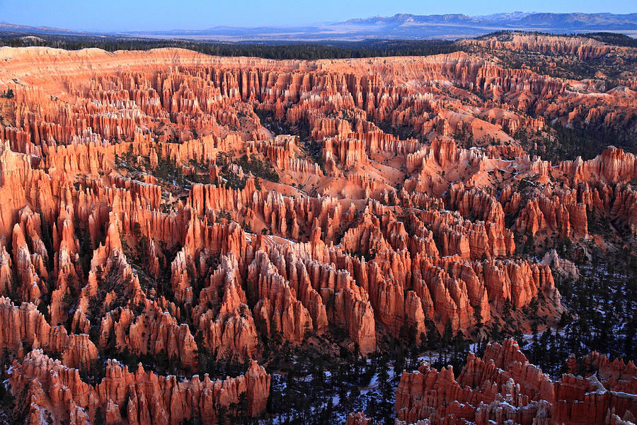 Bryce Photograph - Morning Light In Bryce Canyon by Pierre Leclerc Photography
