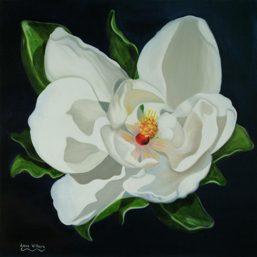Magnolia Painting - Morning Magic by Jana Withers