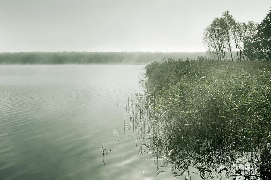 Morning mist at the lake by Arletta Cwalina
