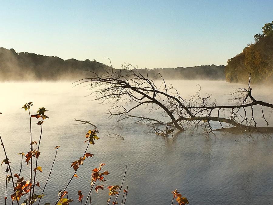 Mist Photograph - Morning Mist by Joseph Mari