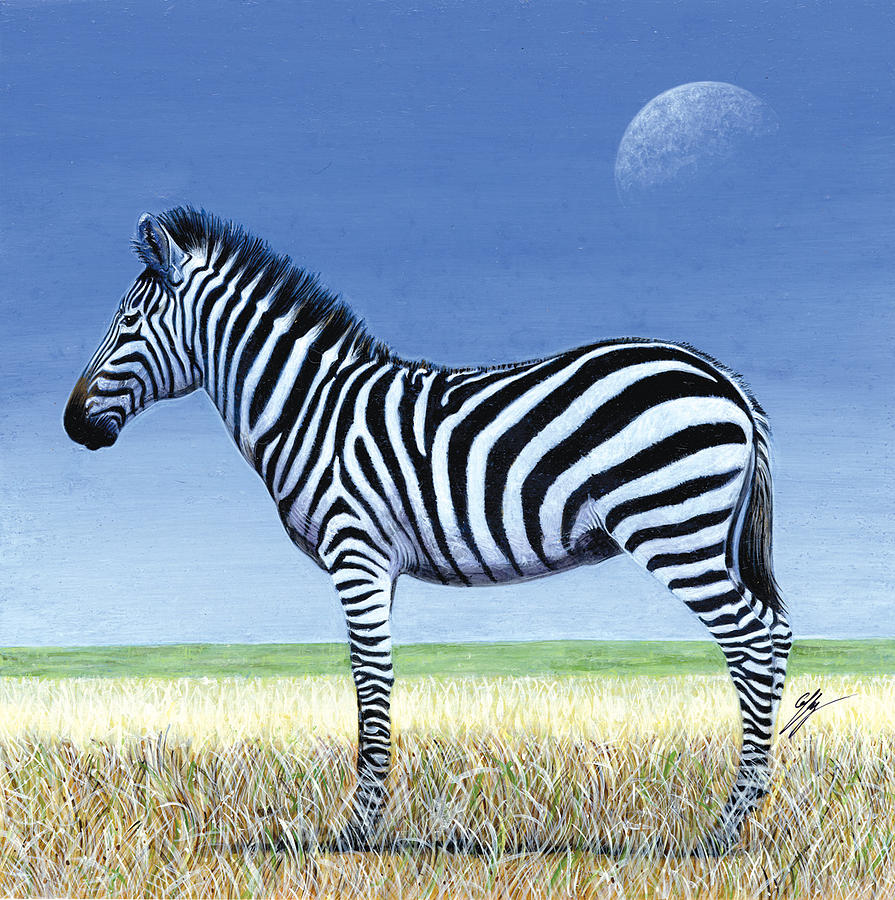 Zebra Painting - Morning Moon by Durwood Coffey