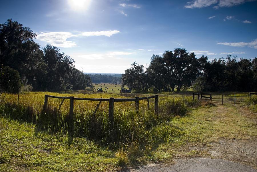 Morning on the Farm by Beverly Stapleton