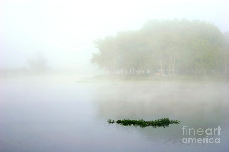 Landscape Photograph - Morning On The Parana by Balanced Art