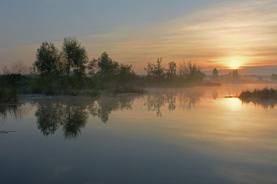 Morning Photograph - Morning On The River by Yurii Shelest