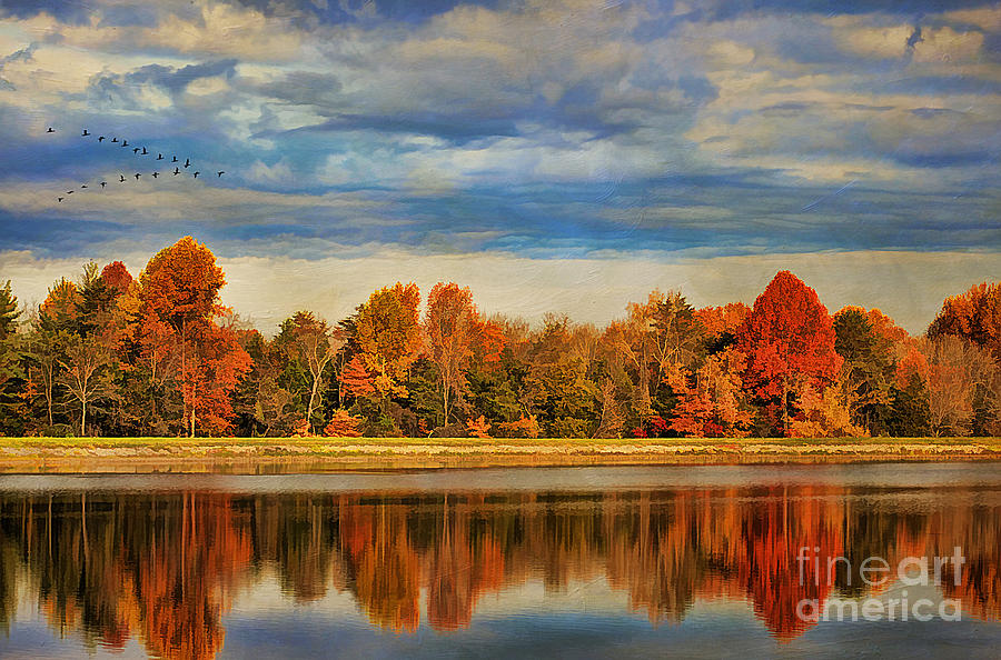 Attraction Photograph - Morning Reflections by Darren Fisher