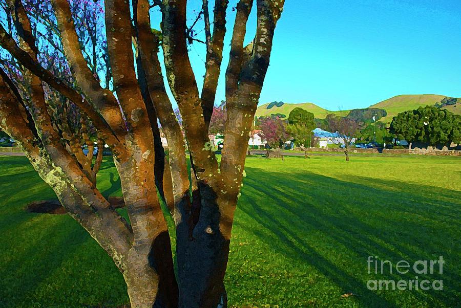 Hawaiian Landscape Photograph - Morning Shadows In Waimea by Bette Phelan