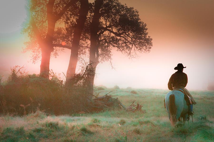 Cowboy Photograph - Morning solitude by Toni Hopper