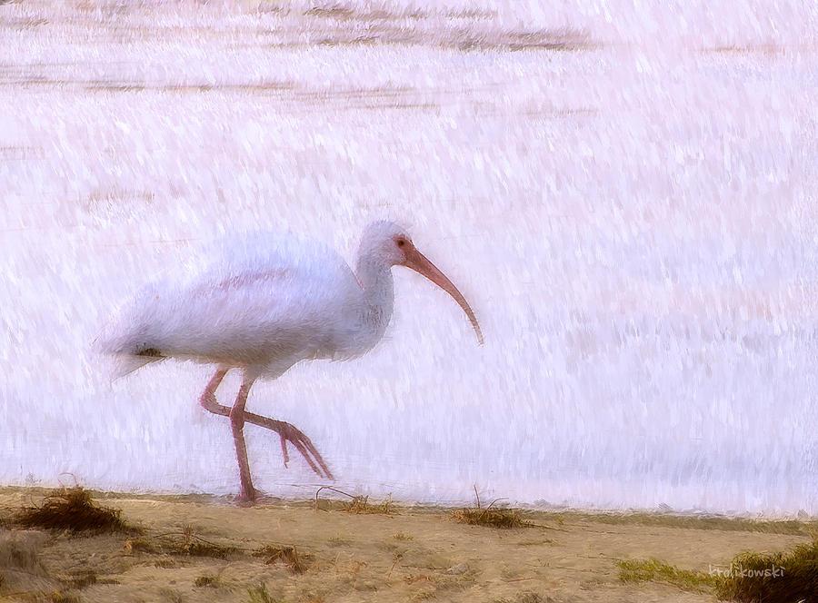 Bird Painting - Morning Stroll by Kenneth Krolikowski