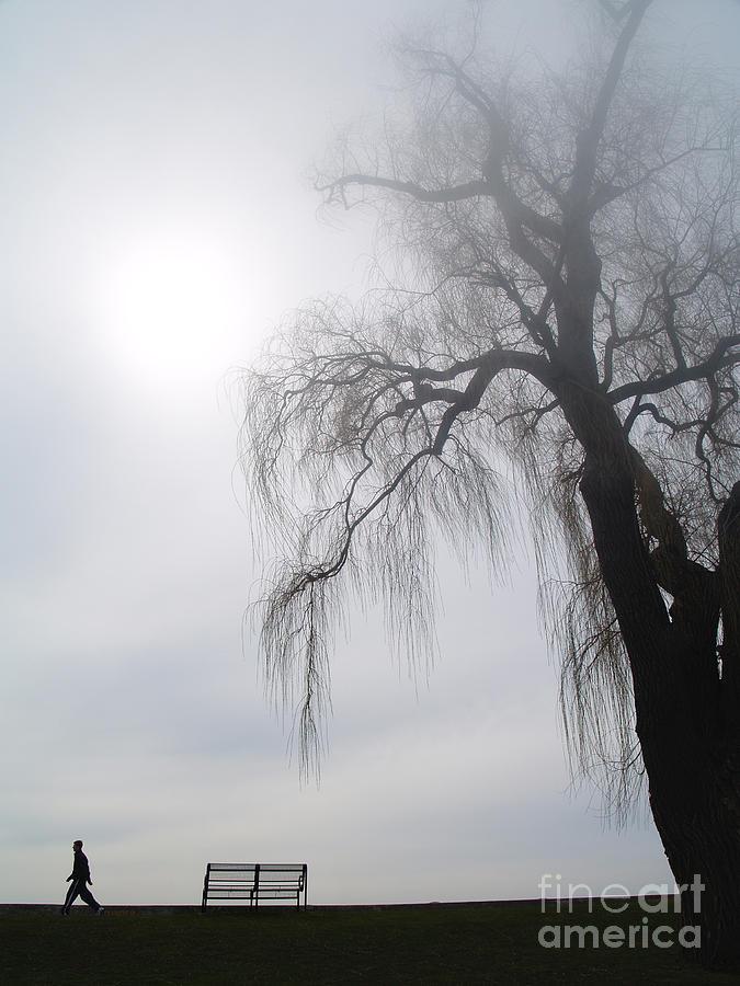 Nostalgic Photograph - Morning Sun Tries To Break Through The Mist. by Emilio Lovisa