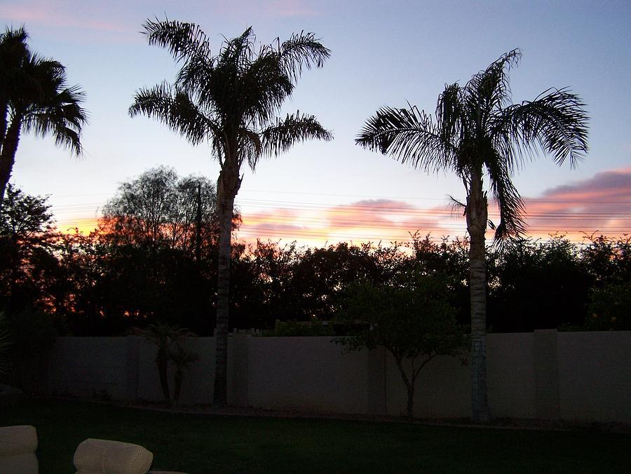 Morning Sunrise Photograph by Pamela Walrath