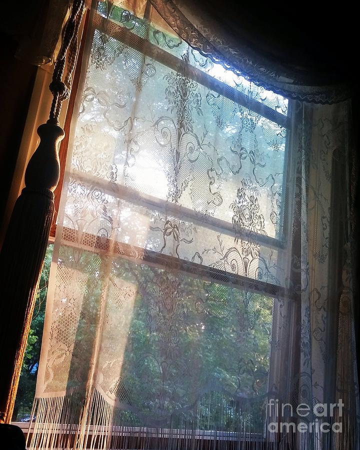 Morning Sunshine by Jodie Marie Anne Richardson Traugott          aka jm-ART