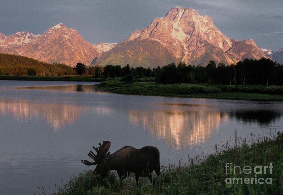 Grand Teton Photograph - Morning Tranquility by Sandra Bronstein