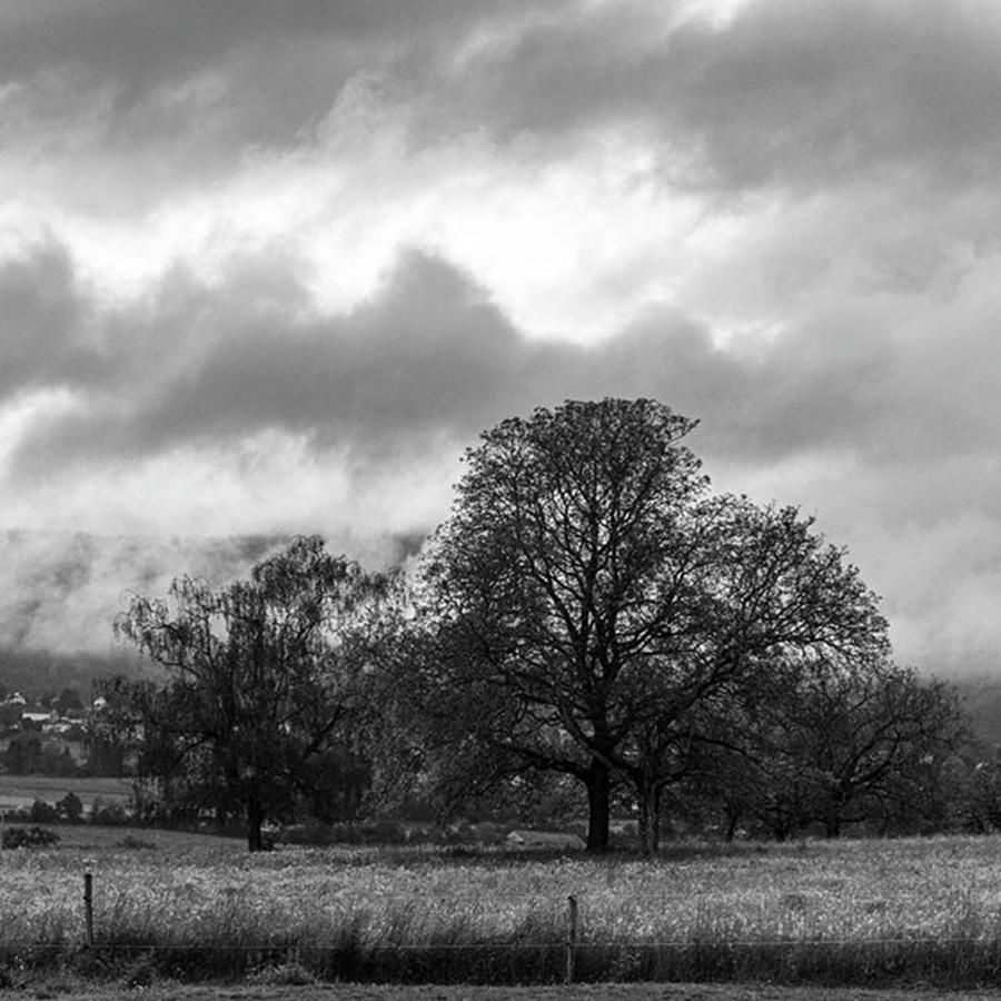 Misty Photograph - Morning View by Aleck Cartwright