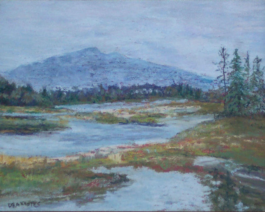 Salt Marsh Pastel - Morning Wakes Acadia by Alicia Drakiotes
