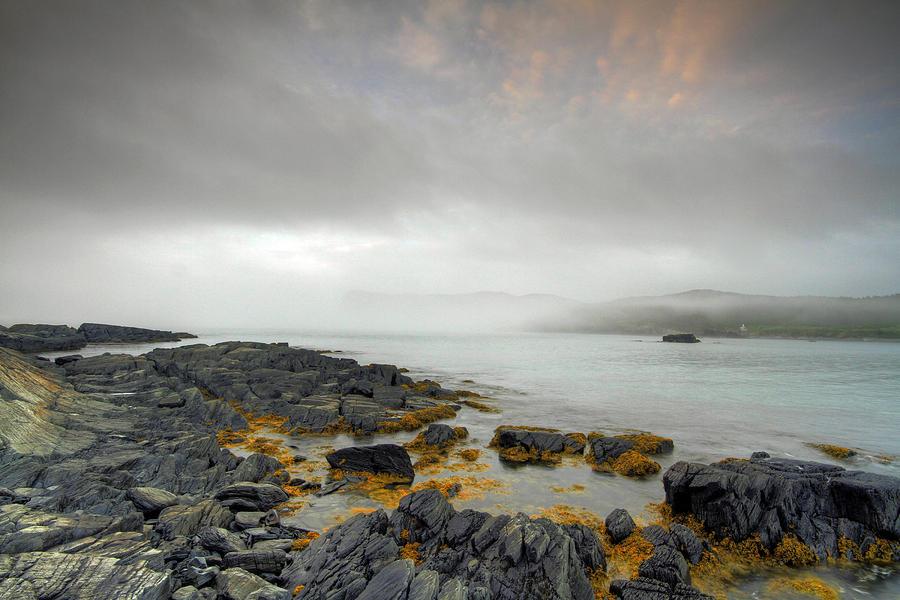 Fog Photograph - Morning Walk by Geoffrey Whiteway