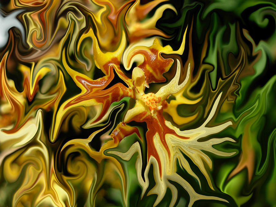 Flowers Photograph - Morphing Angels by Amanda Vouglas