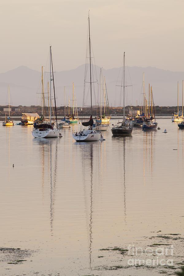 Morro Bay Photograph - Morro Bay Boats in Early Morning Light   by Sharon Foelz