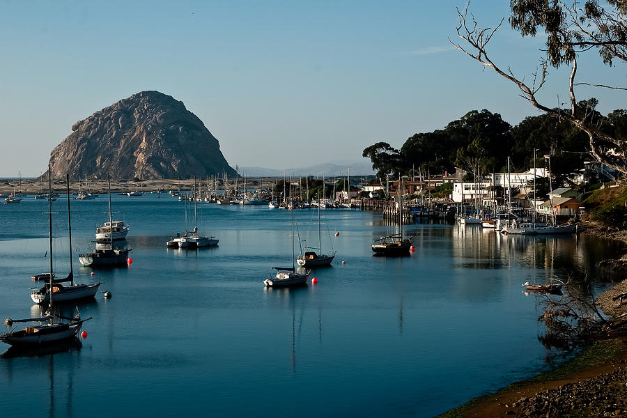 morro bay chatrooms Find hiking trails and campgrounds on hikespeakcom discover trails near you or places you'd like to go in california, other states, and other countries - hiking trails near me with one.