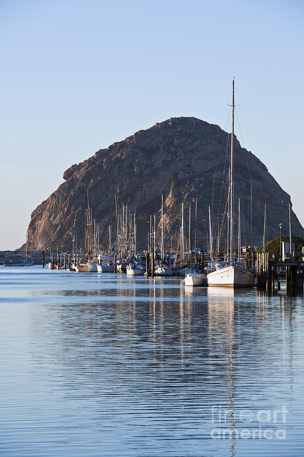 Afternoon Photograph - Morro Bay Sailboats by Bill Brennan - Printscapes