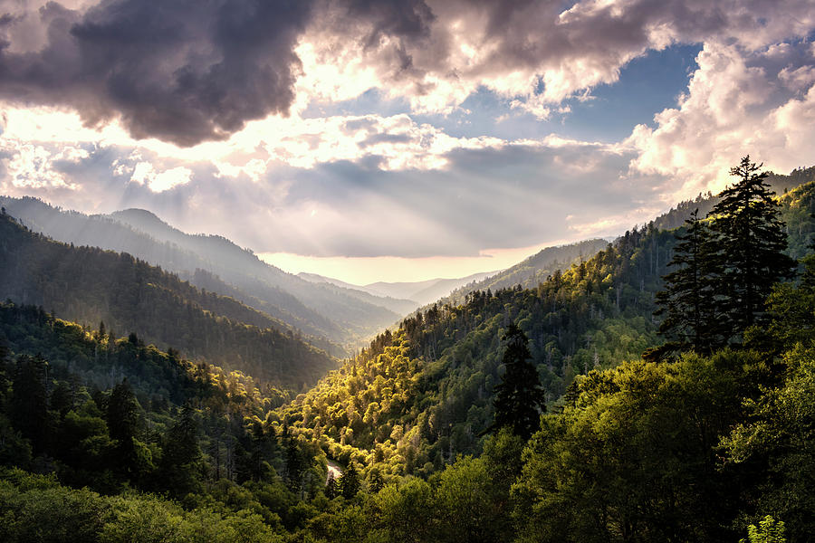 Morton Overlook by Rima Biswas