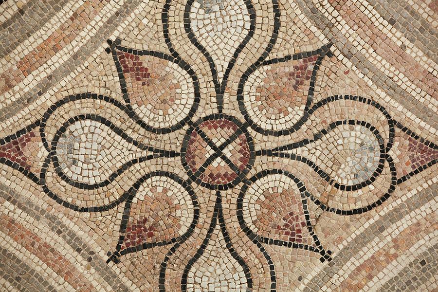 Mosaic Carpet by John Magyar Photography
