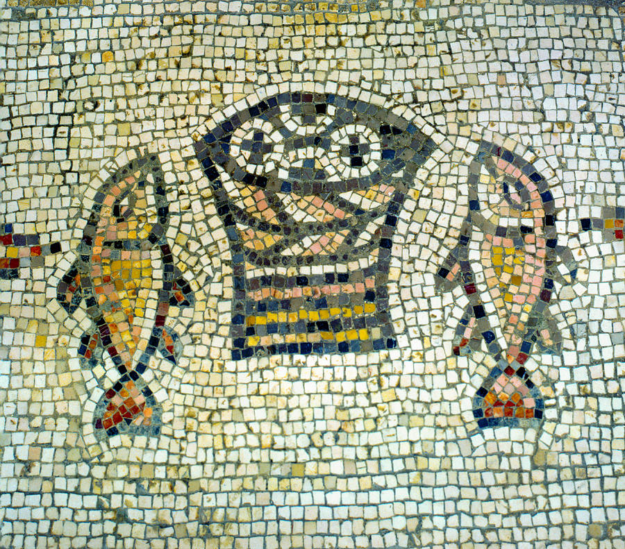 Tabgha Photograph - Mosaic Of Loaves And Fishes by Daniel Blatt