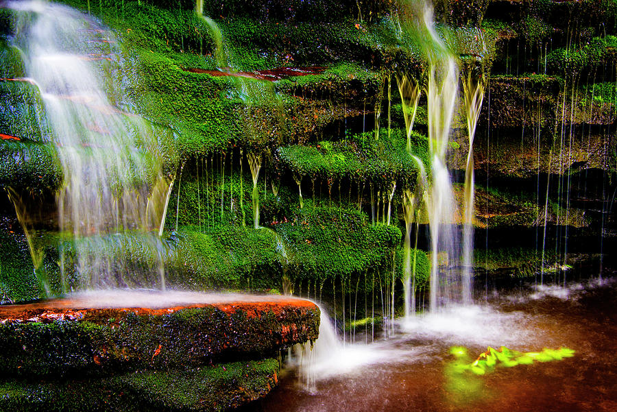 Ricketts Glen Photograph - Moss Falls - 2981-2 by Paul W Faust - Impressions of Light