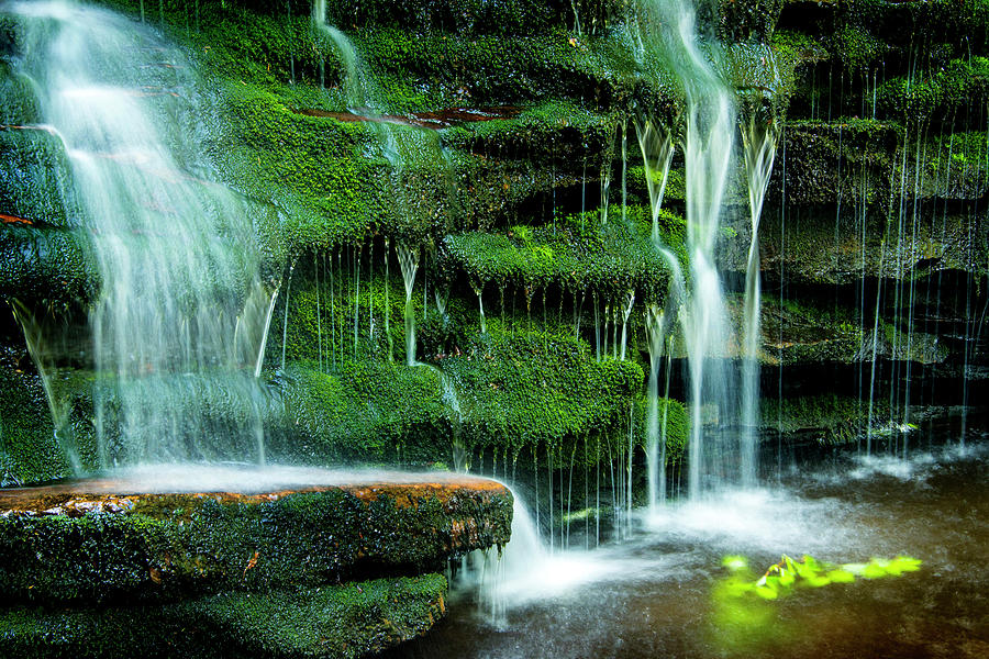 Ricketts Glen Photograph - Mossy Falls - 2981 by Paul W Faust - Impressions of Light