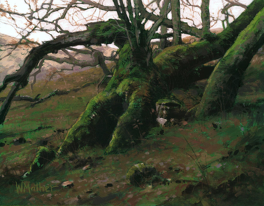 California Landscape Painting - Mossy Oak by Bill Mather