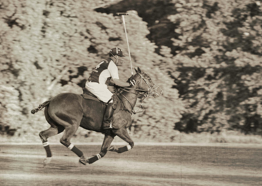 Polo Photograph - Most Forward by JAMART Photography