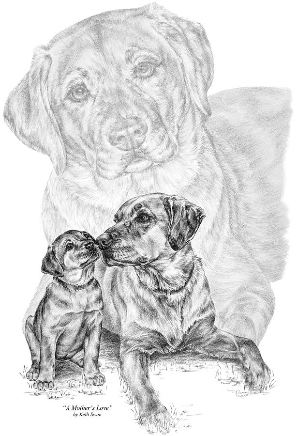 Lab Drawing - Mother Labrador Dog And Puppy by Kelli Swan