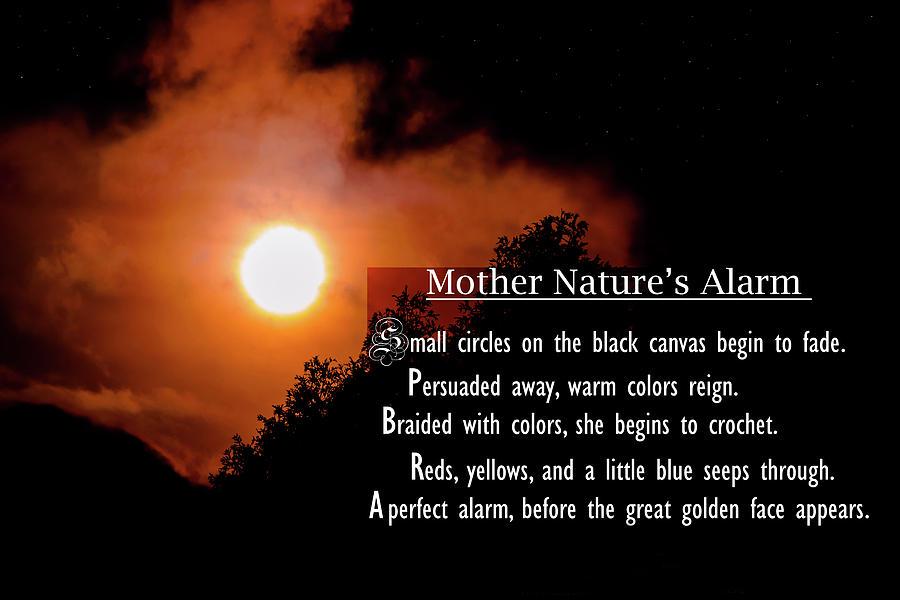 Mother Nature's Alarm by Steven Santamour
