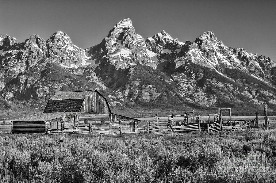 Grand Teton Photograph - Moulton Cabin - Grand Tetons II by Sandra Bronstein