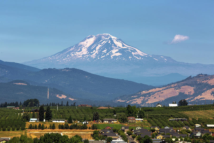 Fruits Photograph - Mount Adams over Hood River Valley by David Gn