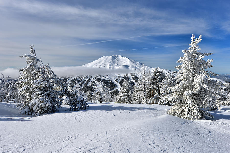 Mount Bachelor Winter by Mark Whitt