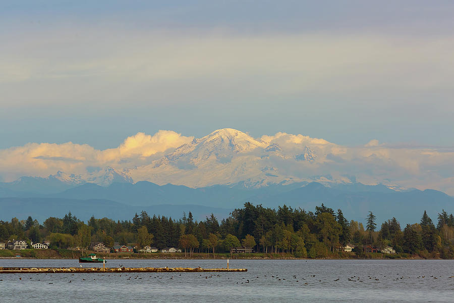 Mount Baker Photograph - Mount Baker from Semiahmoo Bay in Washington by David Gn