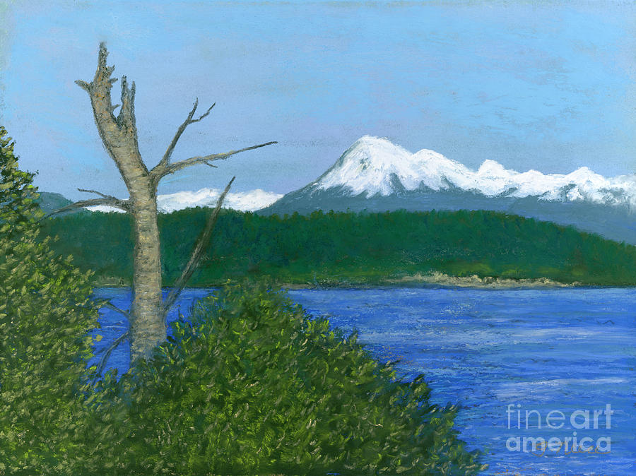 Mount Baker View by Ginny Neece