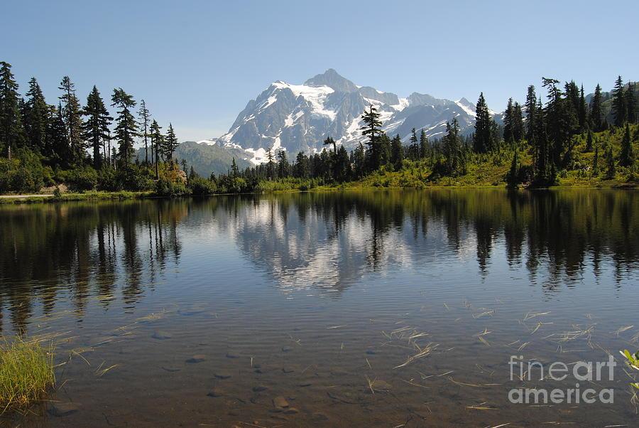 Mount Baker Photograph - Mount Baker, Washington by Beth Erickson