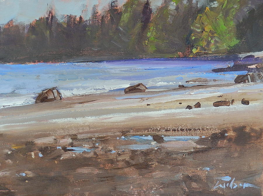 Beach Painting - Mount Doug Beach Contre Jour by Ron Wilson