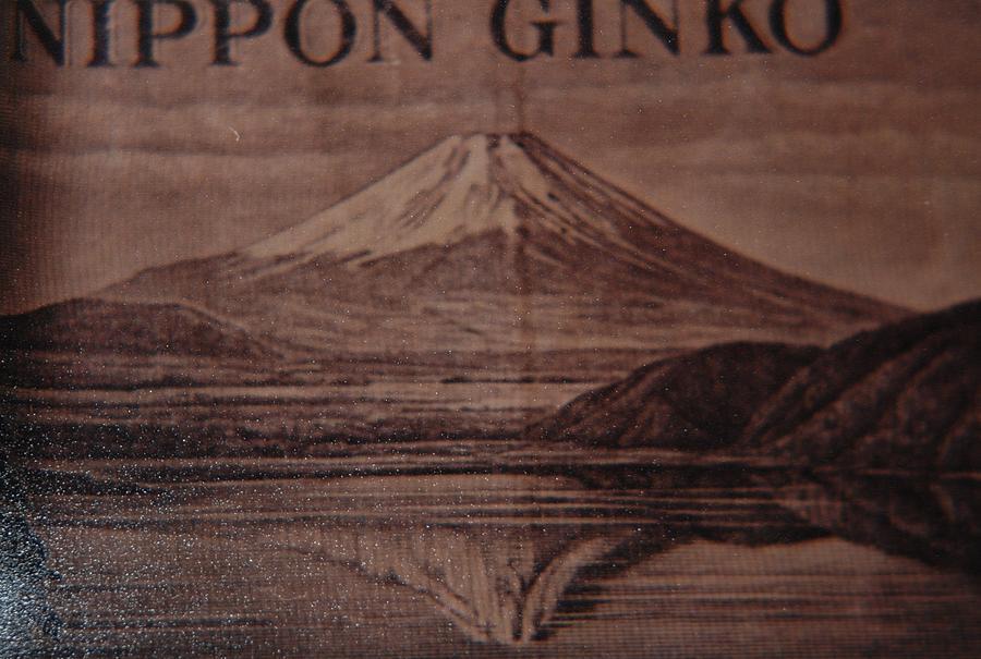 Mount Fuji Photograph - Mount Fuji by Rob Hans