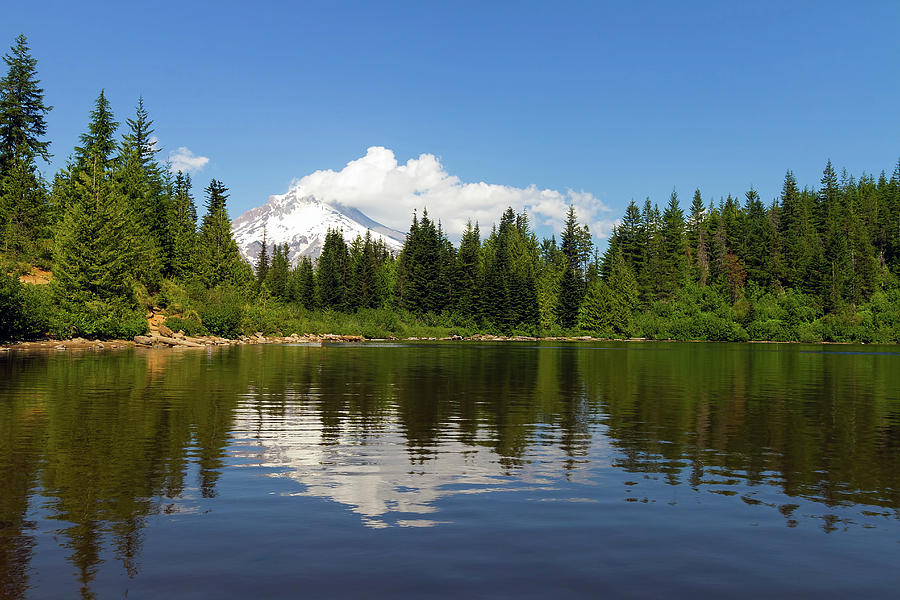 Mount Photograph - Mount Hood by Mirror Lake by David Gn
