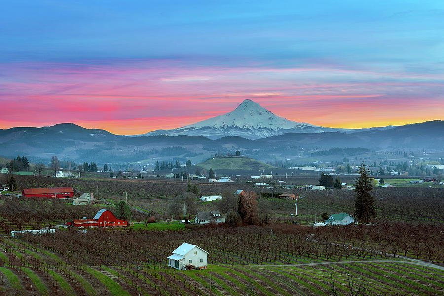 Mount Hood Photograph - Mount Hood over Hood River at Sunset by David Gn