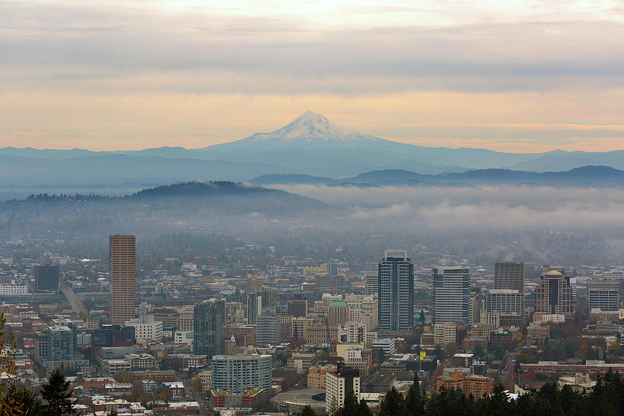 Mount Hood Photograph - Mount Hood over Portland Downtown Cityscape by David Gn