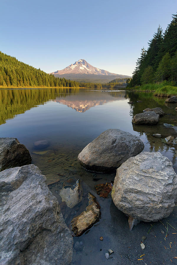 Mount Photograph - Mount Hood Reflection at Trillium Lake by David Gn