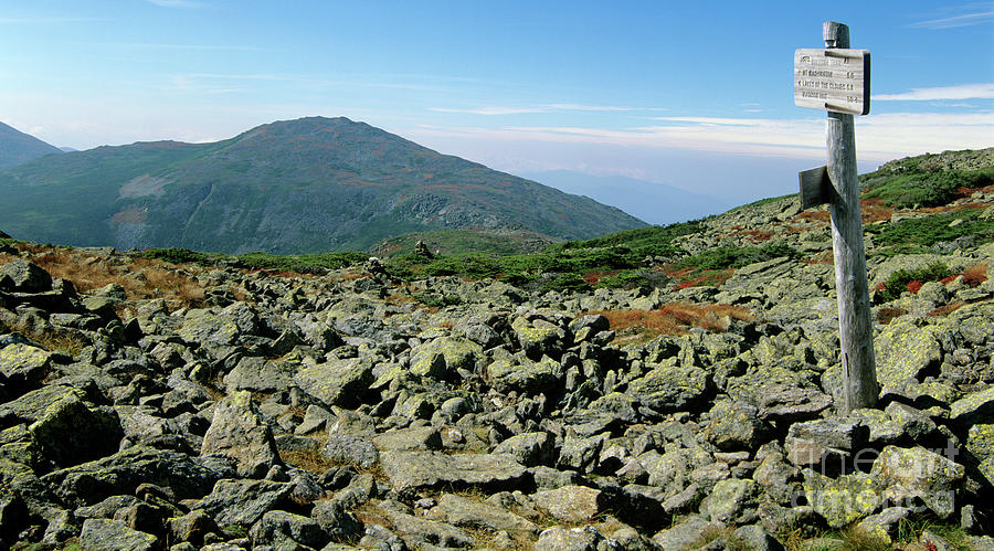Hike Photograph - Mount Jefferson - White Mountains New Hampshire  by Erin Paul Donovan